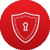 Cyber Secruity Icon